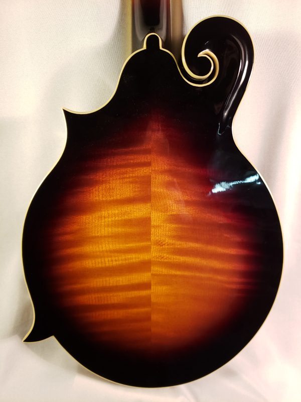 The Loar LM-520 EVS mandolin back